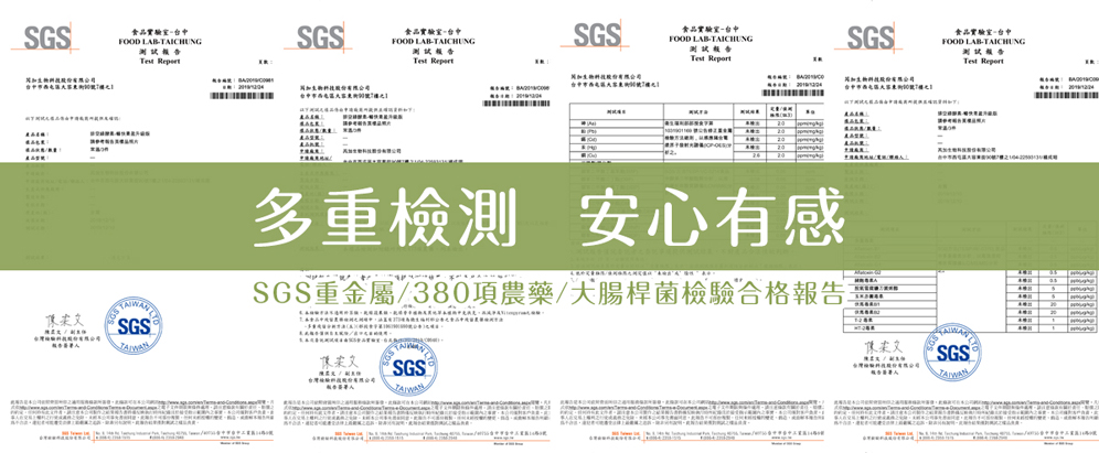 vegetable enzyme sgs product inspection
